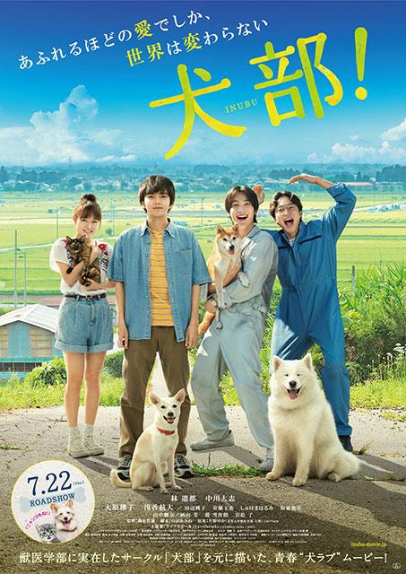 不幸な犬が可愛そう涙、という映画じゃない。犬部!感想。正しさを考えさせ